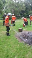 Brandeinsatz (Wald und Fläche)